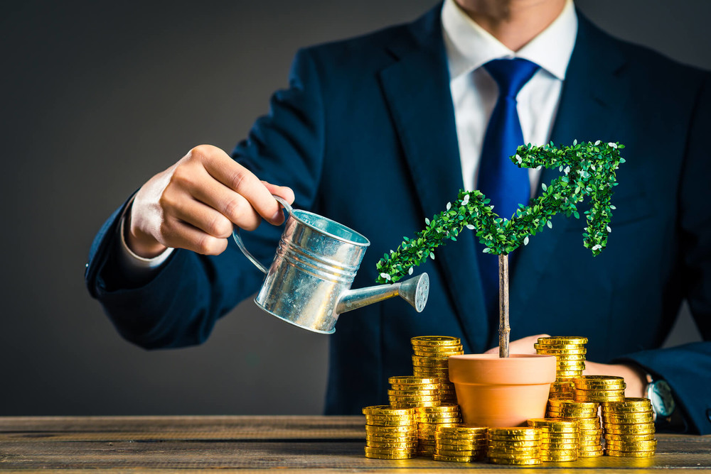 Tree with coins demonstrate that investing is part of the wealth mindset