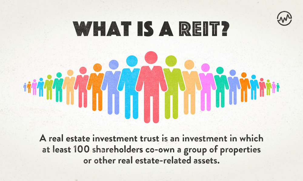What is a REIT grahic definition with 100 shareholders standing side by side